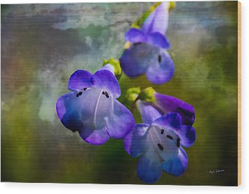 Delicate Garden Beauty Wood Print by Mick Anderson