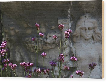 Delicate Pinks Wood Print by Yvonne Wright