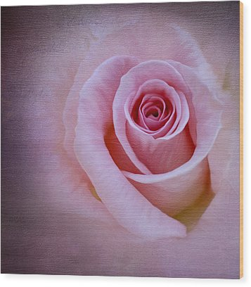 Delicately Pink Wood Print by Ivelina G