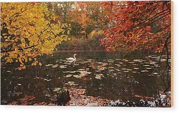 Delightful Autumn Wood Print