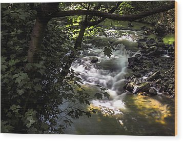 Dell Wood Print by Ross G Strachan