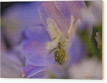 Wood Print featuring the photograph Delphinium by Kathy Ponce
