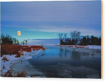 Delta Beach Channel Wood Print by Larry Trupp