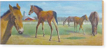 Delval Horse Farm In Spring Wood Print by Oz Freedgood