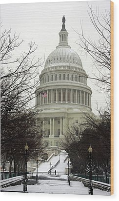 Democracy Of One Wood Print