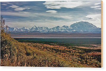 Wood Print featuring the photograph Denali Colors by Jeremy Rhoades