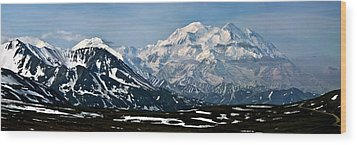 Denali National Park Panorama Wood Print by John Haldane