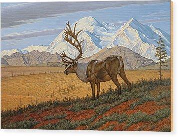 Denali  Wood Print by Paul Krapf