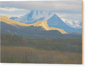 Denali Textures And  Colors Wood Print
