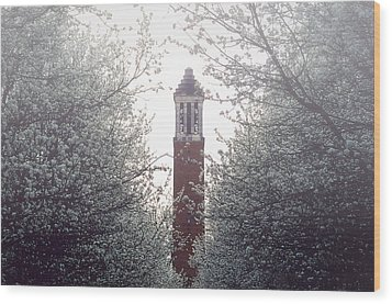 Denny Chimes Foggy Blossoms Wood Print