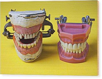Dental Models Wood Print by Garry Gay