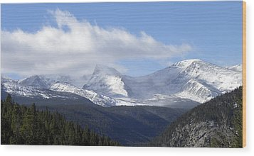 Denver Mountains Wood Print by Julie Palencia
