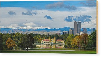 Denver's City Park Wood Print