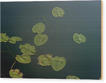 Depth Wood Print by Joseph Yarbrough