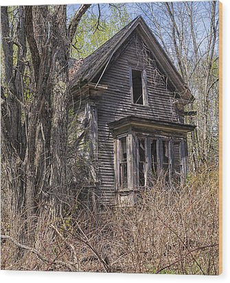 Wood Print featuring the photograph Derelict House by Marty Saccone
