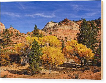 Desert Autumn Wood Print by Greg Norrell
