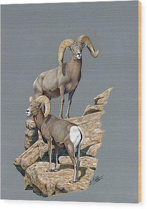 Desert Bighorn Rams Wood Print