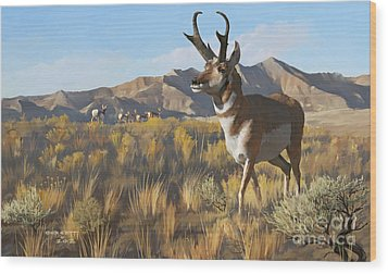 Desert Buck Wood Print