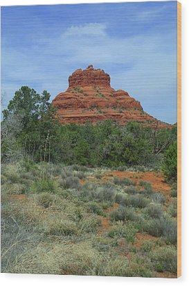 Desert Castle Wood Print