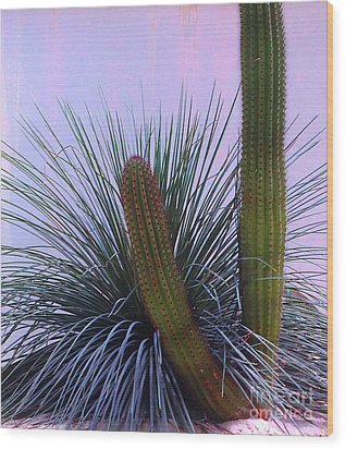 Desert Classic Wood Print by Ann Johndro-Collins
