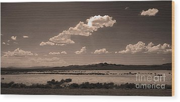 Desert Clouds Wood Print by Gregory Dyer