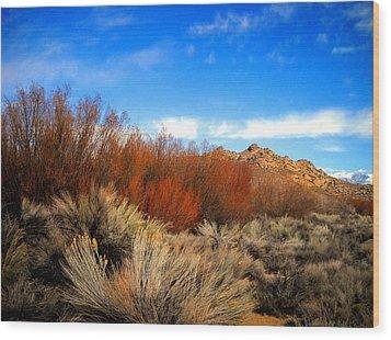 Desert Colors Wood Print by Marilyn Diaz