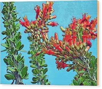 Desert Coral Wood Print