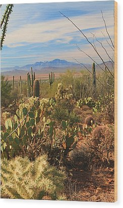 Wood Print featuring the photograph Desert Day by Alicia Knust