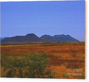 Desert Field Wood Print by Rebecca Christine Cardenas