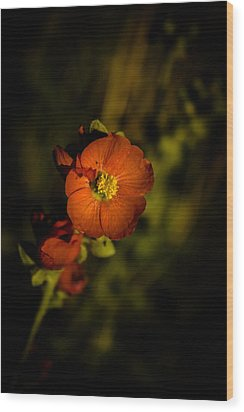 Desert Flower 2 Wood Print