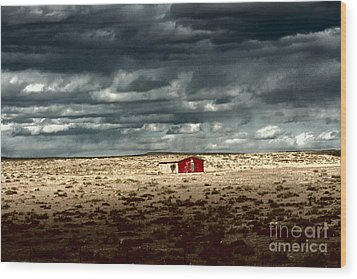 Wood Print featuring the photograph Desert Landscape by Julie Lueders