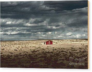 Desert Landscape Wood Print by Julie Lueders