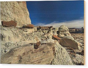 Desert Litter Wood Print by Adam Jewell