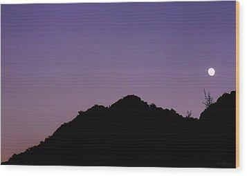 Desert Moonrise  Wood Print by Lin Haring