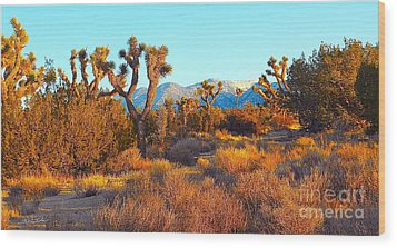 Desert Mountain Wood Print by Gem S Visionary
