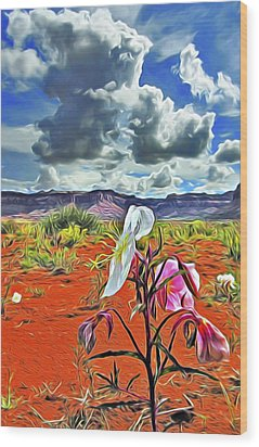 Desert Primrose 3 Wood Print by William Horden