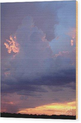 Desert Rainstorm 5 Wood Print by Kerri Mortenson