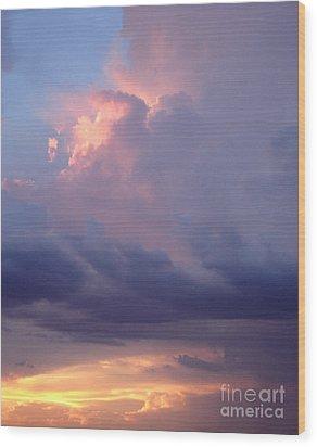 Desert Rainstorm 6 Wood Print by Kerri Mortenson