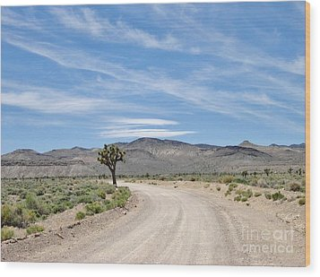 Wood Print featuring the photograph Desert Road by Marilyn Diaz