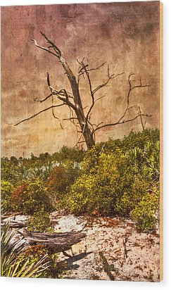 Desert Rose Wood Print by Debra and Dave Vanderlaan