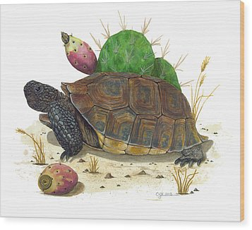 Desert Tortoise Wood Print by Cindy Hitchcock