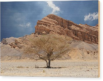 Desert Tree And Mountains Wood Print