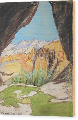 Desert View From The Cave Wood Print by Esther Newman-Cohen