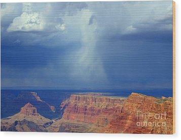 Desert View Grand Canyon Wood Print by Bob Christopher
