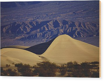 Desert Wave Wood Print by Michael Courtney