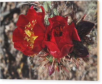 Wood Print featuring the photograph Desert Wildflowers by Diane Lent