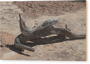 Wood Print featuring the photograph Desert Wildwood by Fortunate Findings Shirley Dickerson