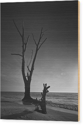 Deserted Beach Sunset Wood Print