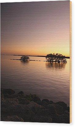 Deserted Island Wood Print by AR Annahita
