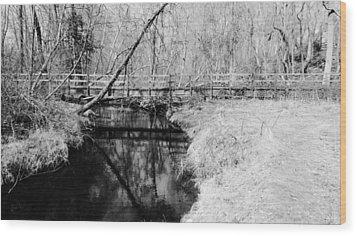 Desolate Wood Print by Art Dingo